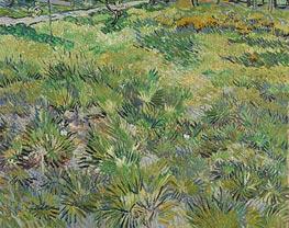 Vincent van Gogh | Meadow in the Garden of Saint-Paul Hospital, 1890 | Giclée Canvas Print