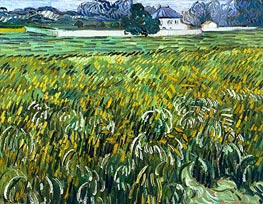 Vincent van Gogh | Wheat Field at Auvers with White House, 1890 | Giclée Canvas Print