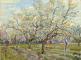 Vincent van Gogh | The White Orchard, 1888 | Giclée Canvas Print