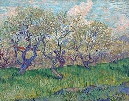 Vincent van Gogh | Orchard in Bloom, 1888 | Giclée Canvas Print