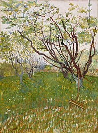 Vincent van Gogh | Orchard in Blossom, 1888 | Giclée Canvas Print