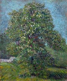 Vincent van Gogh | Chestnut Tree in Blossom | Giclée Canvas Print