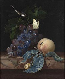 Willem van Aelst | A Still Life with Grapes, Peach, Cabbage-White and Dragon-Fly, 1665 | Giclée Canvas Print