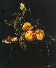 Willem van Aelst | Still Life of Fruit, c1667/74 | Giclée Canvas Print
